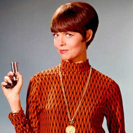 Image result for Barbara Feldon Agent 99
